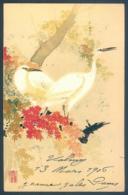 Litho Oiseaux Oiseau Du Japon 1906 Viennoises De B K W I Bird - Oiseaux