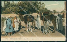 Libia Tripoli Ethnic Postcard XC1721 - Libyen
