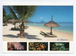 Ile Maurice, Mauritius: Flic En Flac, Plage (19-1684) - Maurice