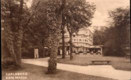 """Laeken : """"Le Viking"""" Restaurant-Pension De Famille / Caves Renommées Des Bières Burny Et Carlsberg - Carte Privée - Laeken"""