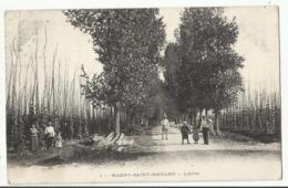 Magny-Saint-Médard (Côte D'Or) : L'allée Du Houblon  1912 - Autres Communes
