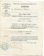 """MAINE ET LOIRE De LA PLAINE Patente De 1877 Pour Un """"COURTIER DE BESTIAUX"""" - Manuscrits"""