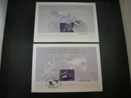 """BELG.2001 3012 & 3013 FDC Filatelic Cards :""""Cards Met/avec Handtekening/signé ELS VANDEVYVERE(disigner Cards & Stamps )"""" - FDC"""