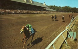 Sports > Horse Show - Saratoga Raceway - Horse Show