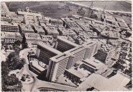 """Algérie / ALGER - Panorama Sur Le Gouvernement Général, Le Port, Et Le Centre Ville """"Cliché I.G.N."""" - 1954 - Algeri"""