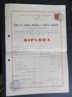 12.5) UDINE SOCIETA' FILOLOGICA FRIULANA DIPLOMA CULTURA ARTISTICA E STORICA 1958 - Diplomi E Pagelle