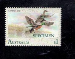 835841476 1991 SCOTT 1206 POSTFRIS MINT NEVER HINGED EINWANDFREI (XX)  SPECIMEN WATERBIRDS - Neufs
