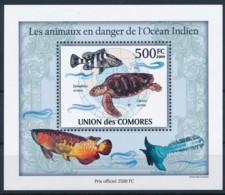D - [38212]TB//**/Mnh-Comores 2009 - BL249, Animaux En Danger, Globe Terrestre, Océan Indien, Tortues. - Other