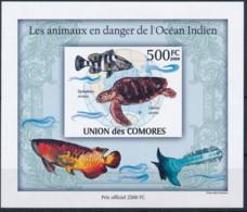 D - [38213]TB//ND/Imperf-Comores 2009 - BL249, Animaux En Danger, Globe Terrestre, Océan Indien, Tortues. - Other