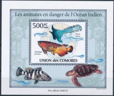 D - [38214]TB//**/Mnh-Comores 2009 - BL249, Animaux En Danger, Globe Terrestre, Océan Indien, Tortues. - Other