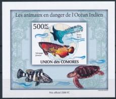 D - [38215]TB//ND/Imperf-Comores 2009 - BL249, Animaux En Danger, Globe Terrestre, Océan Indien, Tortues. - Other