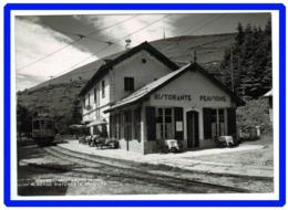 23226 CPM MOTTARONE  : Albergo Ristorante Stazione ; Le Train En Gare !!  !! SUPERBE Carte Photo !!! - Verbania