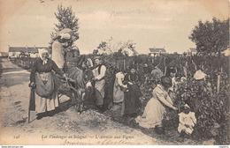 45-VENDANGES EN SOLOGNE-L ARRIVEE AUX VIGNES-N°R2043-C/0361 - Autres Communes