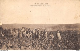 51-VENDANGES EN CHAMPAGNE-LA CUEILLETTE-N°R2044-D/0219 - Francia