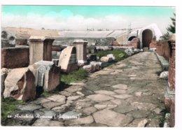 Borgo Centore Cellole Sessa Aurunca Caserta Anfiteatro Romano Acquarellata Anni 50 - Caserta