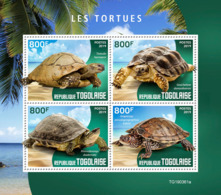 Togo 2019 Turtles Fauna Turtle S/S TG190361 - Francobolli