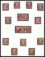 O 80c Empire: Collection De 25 Exemplaires Dont Nuances, Paires, Bande De 3 Et Oblitérations, Très Belle Qualité. SUP  Q - 1853-1860 Napoleone III