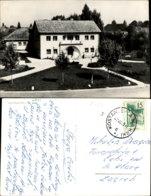 KOSTANJEVICA,SLOVENIA POSTCARD - Slowenien