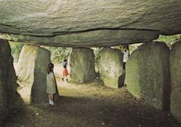 85 Longeville Le Bernard, Dolmen De La Frébouchère - Autres Communes
