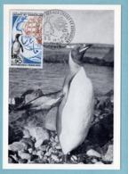 Carte Maximum 1972 - Découverte Des îles Crozet Et Kerguelen YT 1704 - Paris - Maximum Cards