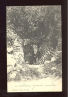 GOLFE DU MORBIHAN - ILE DE GAVR'INI - ENTRÉE DU TUMULUS - N° 2395 - Larmor-Plage