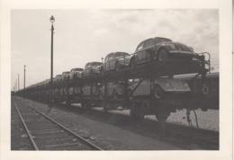 Transport Ferroviaire De Coccinelles - Photo 7.5 X 10.5 Cm - Automobiles