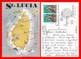CPSM/gf  SAINTE- LUCIE.  Carte De L'ile...J805 - Santa Lucia