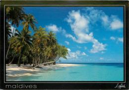 Maldives - Tropical Paradise - Moderne Grand Format - Bon état Général - Maldives