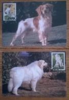 Lot De 2 Cartes Postales Timbre 1er Jour / Animaux / CHIENS  /  FDC - Honden