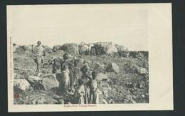 Aspect D'un Village Somalis  -  Obe3436 - Djibouti