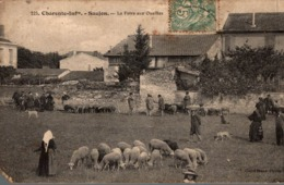 SAUJON LA FOIRE AUX OUAILLES - Saujon