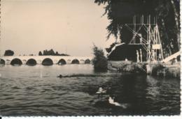 MONTRICHARD - Plongeon Dans Le Cher - Montrichard