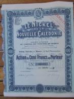 NOUVEL CALEDONIE - PARIS 1909 - LE NICKEL DE LA NOUVELLE CALEDONIE - ACTION DE 100 FRS - Non Classés