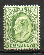 AMERIQUE DU NORD - FALKLAND - (Colonie Britannique) - 1904-05 - N° 18 - 1/2 P. Vert - (Edouard VII) - Falkland Islands