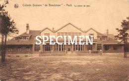 Colonie Scolaire De Beeckman - La Plaine De Jeux - Asch - Asse - Asse