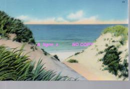 REF 421 : CPA Etats Unis Nantucket - Nantucket