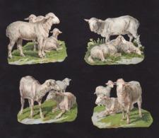 Découpis   Lot De 4    Moutons       6.5 X 5.2 Cm Le Plus Grand - Découpis