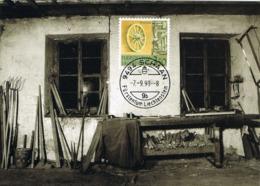 33898. Tarjeta Maxima SCHAAN (Liechtenstein) 1993, Wagnerei Gottlieb Hilti - Cartas Máxima
