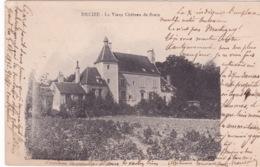 58-DECIZE- LE VIEUX DE BRAIN - Decize