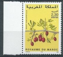 Maroc - Yvert N° 1219**   - Bce21818 - Marokko (1956-...)