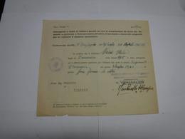 CONGEDO  MILITARE  ---    VII° COMPAGNIA   --33° REGGIMENTO  CARRISTI - 1939-45