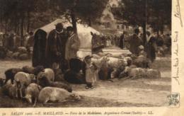 36 - Indre - Argenton Sur Creuse - Foire De La Madeleine - Salon 1907 - C 9260 - Otros Municipios
