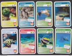 8 CARTES DE JEU PLAYING CARDS LISBON OCEANARIUM DE LISBONNE ANIMALS PORTUGAL - Playing Cards (classic)