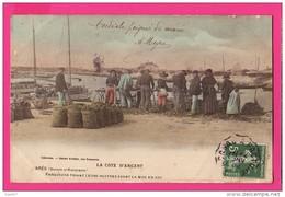 CPA (Réf : PA118) La Côte D'Argent ARÈS (bassin D'Arcachon) (33 GIRONDE) Parqueurs Triant Leurs Huîtres (animée) - Arès