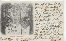 AK 0321  Stájerlak ( Steierdorf ) - Szarvaskert  Um 1901 - Rumänien