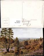 630936,Künstler Ak A. R. Quinton Hindhead Surrey The Golden Valley Great Britain - Ansichtskarten