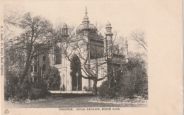 *** SUSSEX ***   BRIGHTON Royal Pavillon North Gate     - TTB Unused - Brighton