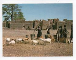 Burkina Faso: Pres De Koudougou, Pilage Du Sorgho, Chevres, Chevre (19-1715) - Burkina Faso