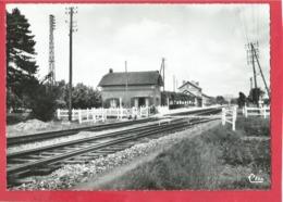 CPSM  Grand Format  -  Quesnoy Le Montant  -(80.Somme) - La Gare - Autres Communes