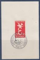 = Exposition Philatélique Europa 1958 Paris 13 Septembre 1958 Sur Fragment N°1173 - 1958